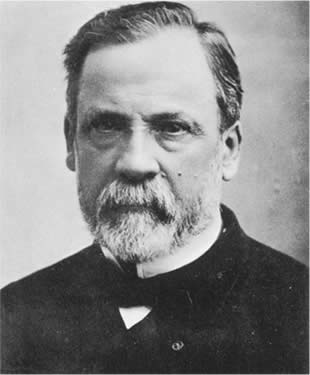 Louis Pasteur Germ Theory